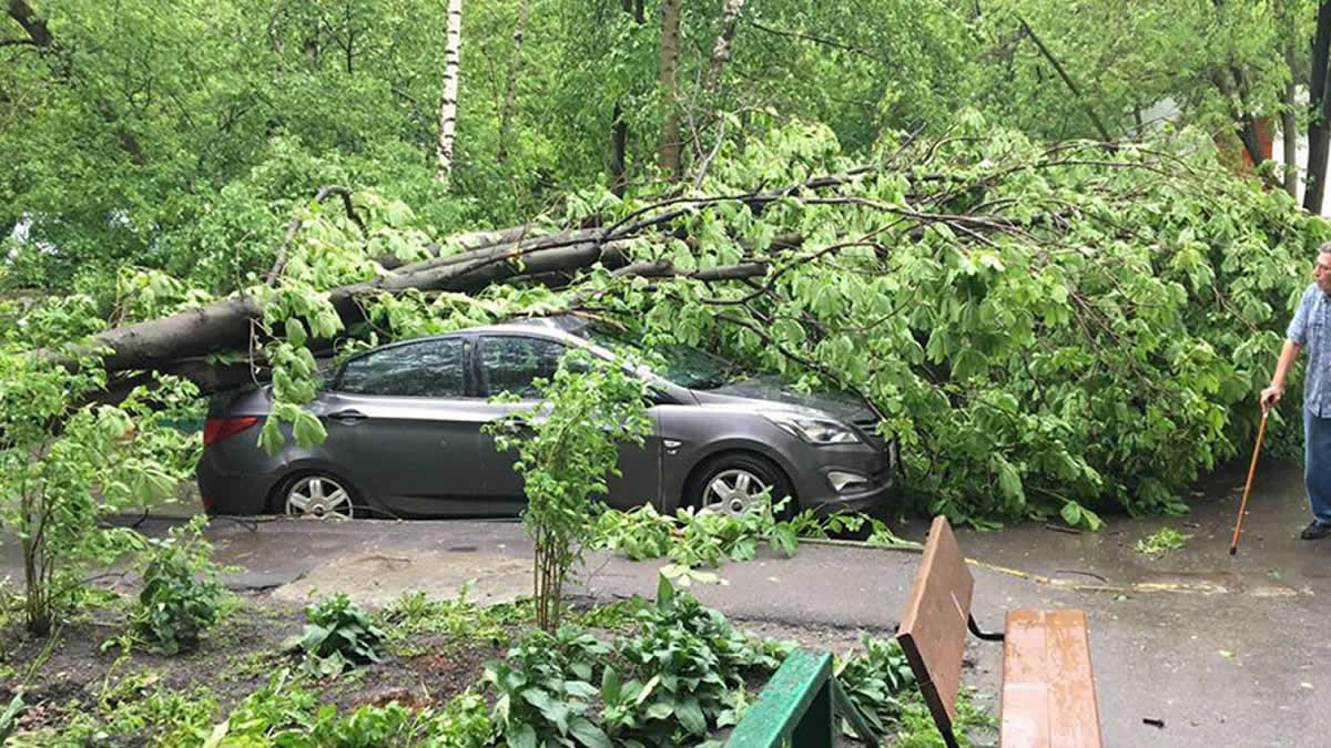 (Video)Tormentas eléctricas y vientos en Moscú causan seis muertos
