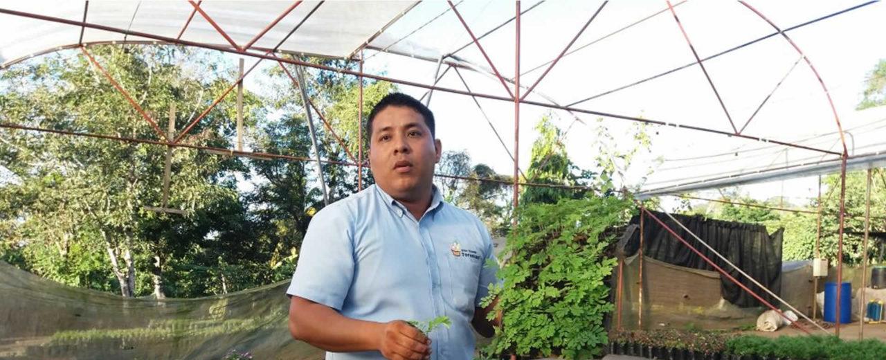"""Jóvenes ambientalistas reciben taller sobre """"Trenzado de Laureles"""" en  Catarina"""