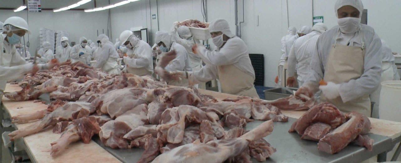 Aumenta índice de producción en carnes, granos básicos y hortalizas