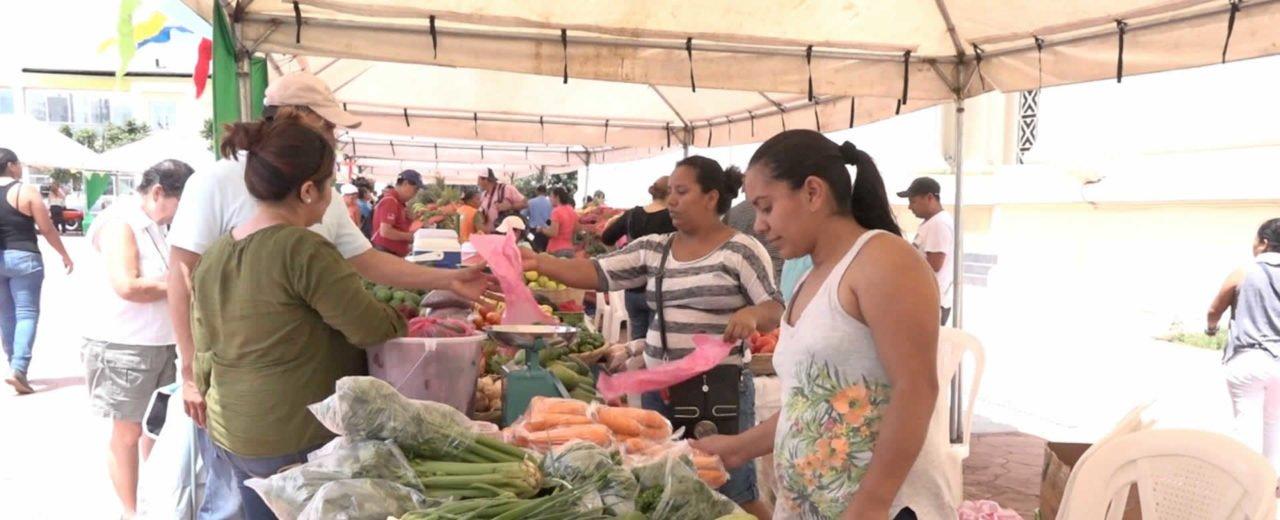 Mercadito Campesino llega a la Plaza 22 de Agosto