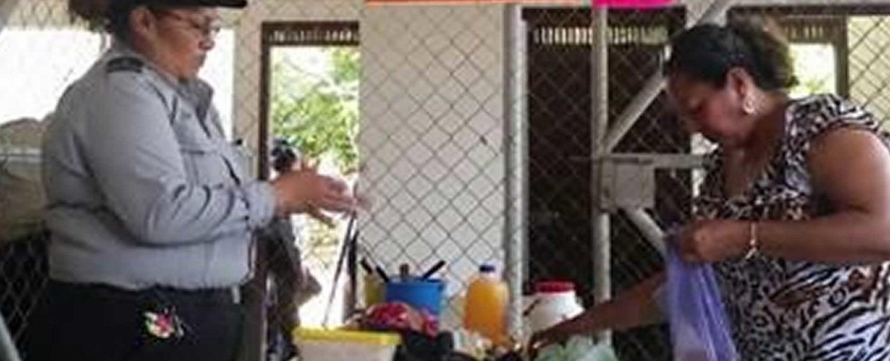 Gobierno de Nicaragua respeta los Derechos Humanos de los terroristas presos en el Sistema Penitenciario