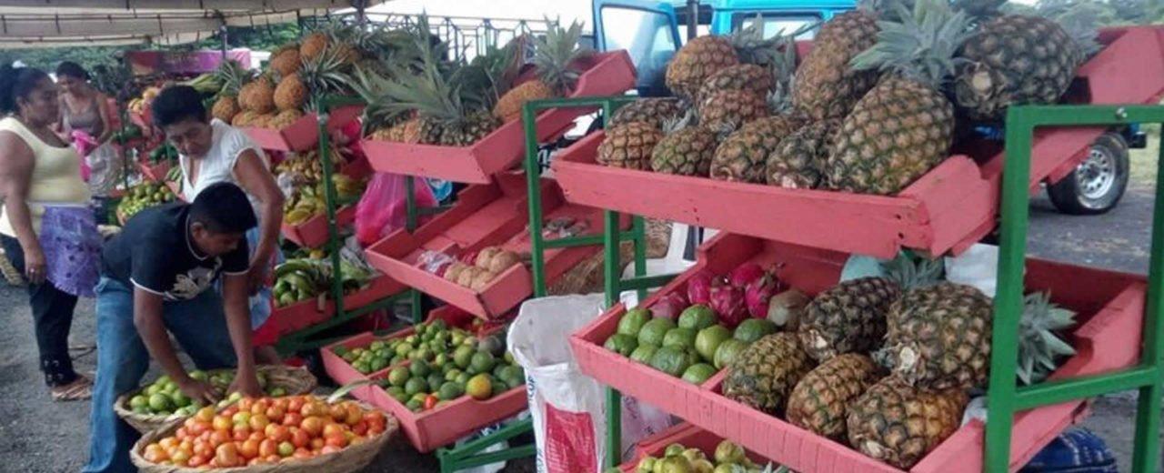 Comerciantes del mercado campesino ofertan sus productos a precio solidario