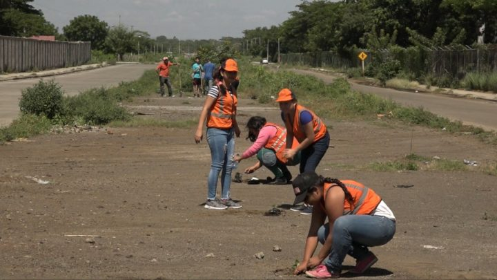 Reforestan con símbolos patrios entornos de urbanización Monte Nebo